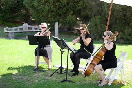Class Act Wedding Music Margaret River region weddings